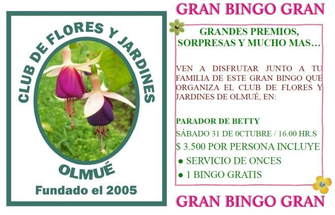 BINGO FLORES